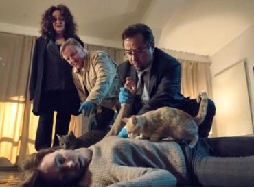 """Sonntagskrimi – Tatort """"Schlangengrube"""""""
